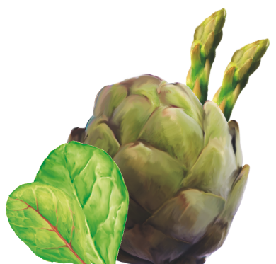 carciofo-insalata-asparagi-agrinsieme-organizzazione-produttori