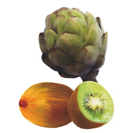 carciofo-kiwi-agrovanni