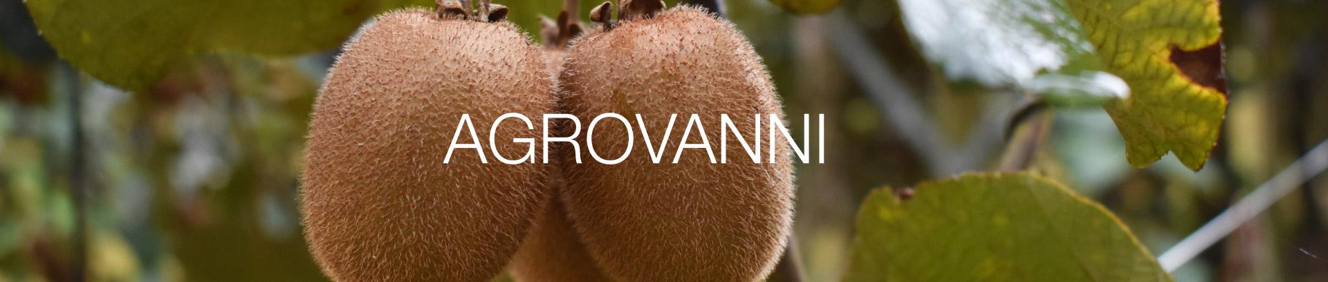 intestazione-agrovanni-cooperativa-agricola-sezze