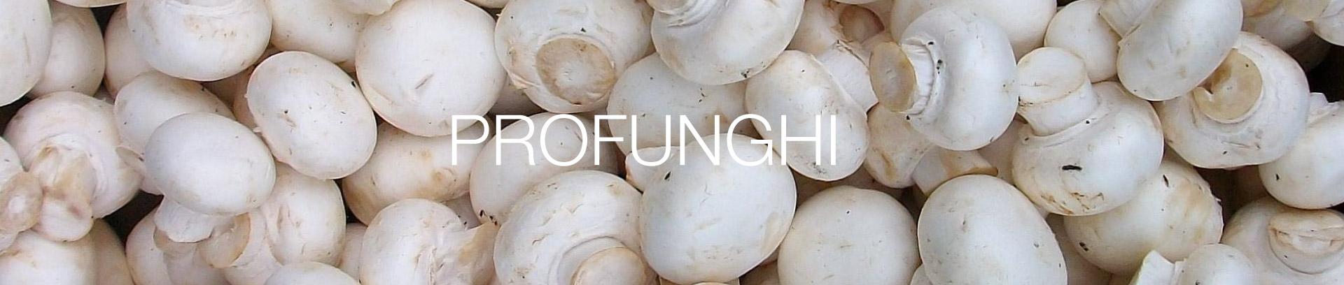 intestazione-profunghi-cooperativa-agricola