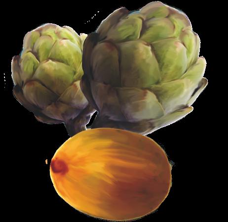 kiwi-carciofi-agora-cooperativa-agricola