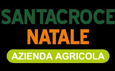 logo-santacroce-natale