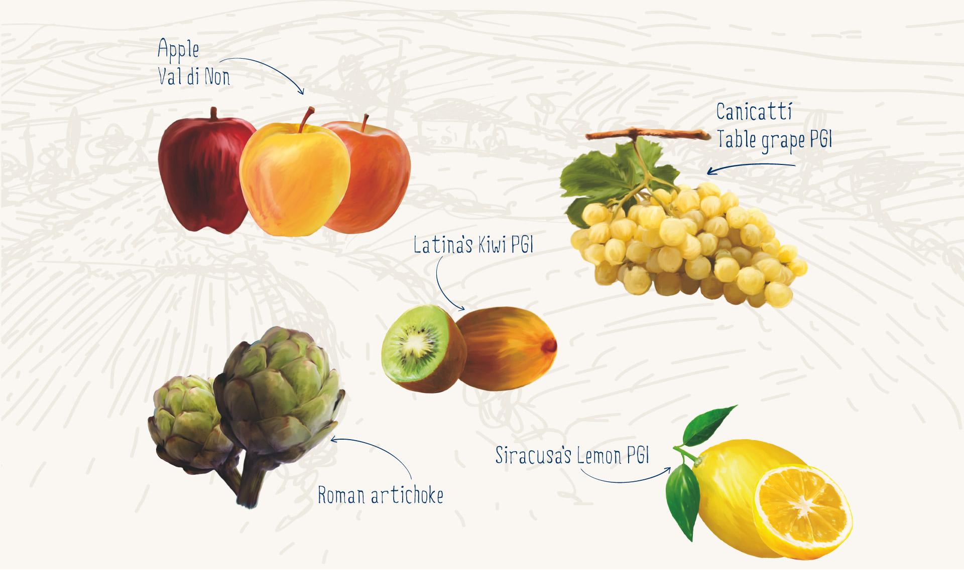 produzione-frutta-larga-scala-organizzazione-produttori-agrinsieme-en