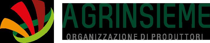 logo-agrinsieme-organizzazione-produttori-certificazione-orizzontale